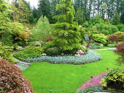 Dise o de jardines - Arboles bonitos para jardin ...