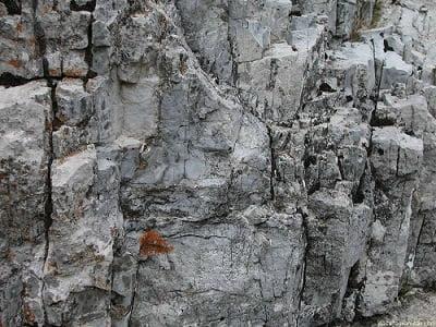 roca-construccion