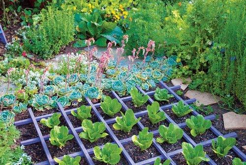 Ideas para dise ar un jard n org nico arkiplus - Disenar jardin online ...