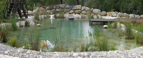 piscina-ecologica1