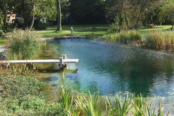 piscinas-ecologicas2