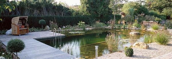 piscinas-ecologicas3