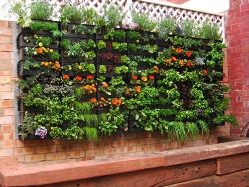 diseño-jardines-verticales3